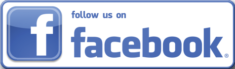 Image result for follow us on facebook button